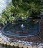 Садовые пруды и водоемы